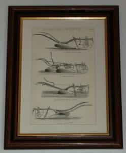 Agricultural Implements 3 Plough page dated 1880 available unframed